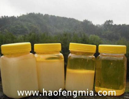 梧州鸭脚木蜂蜜定性鉴别有了图谱支撑技术支撑