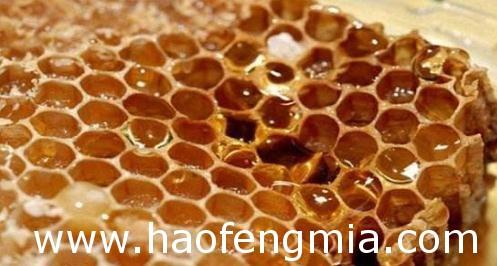 蜜蜂巢脾中毒怎么办?
