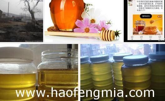 蜂蜜作用:隋唐时用来腌制和保存螃蟹