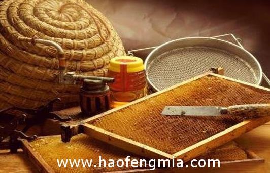 国内外蜂蜜标准对比分析