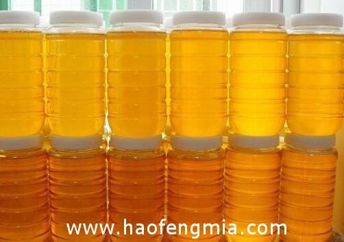 为什么蜂蜜中有杂质