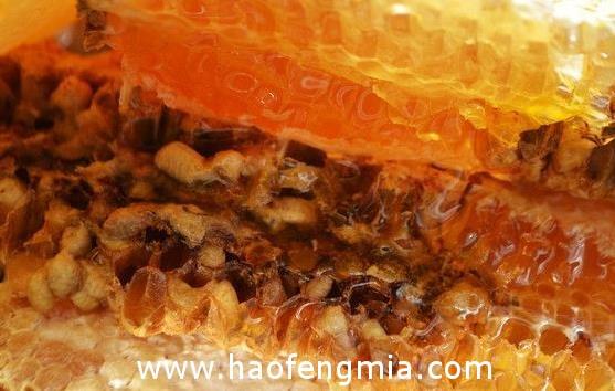 高原蜂蜜介绍
