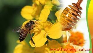 蜂蜜食品生产许可获证企业(SC)之江西省会昌县花海蜂蜜有限公司