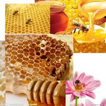 蜂蜜不能跟那些食物同吃?蜂蜜相克食物