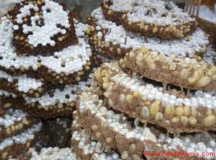 蜂蛹制品介绍
