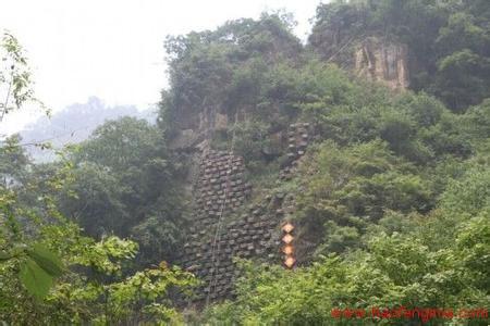 蜂蜜创业:青城崖壁养蜂 古法养殖产特色崖蜜