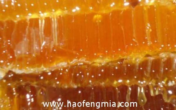 不同种类的蜂蜜都有哪些作用