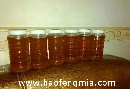 在淘宝上怎样能买到真蜂蜜?