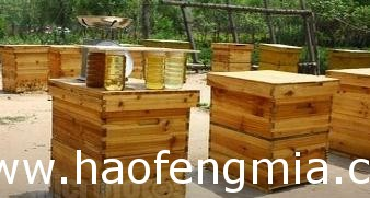 十六框横卧式蜂箱构造介绍