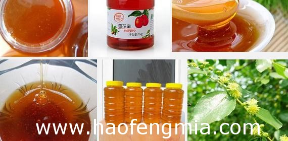 真正的枣花蜜是什么颜色