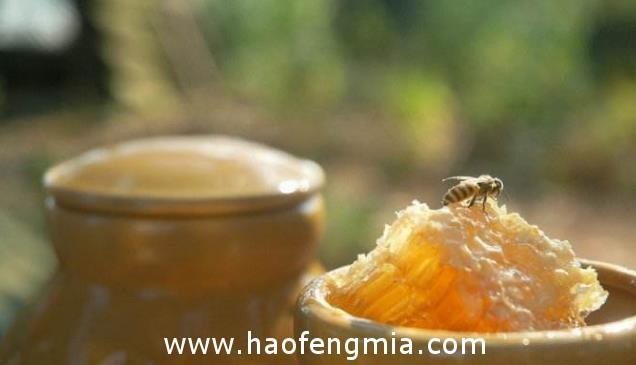 蜂蜜到底用什么容器装最好