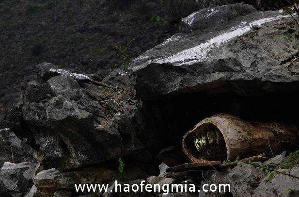 湘西洛塔乡梭洛村利用喀斯特地貌发展野生蜂蜜产业