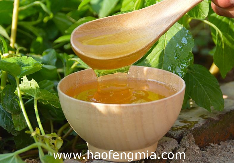 海外市场我出口蜂蜜的品质要求