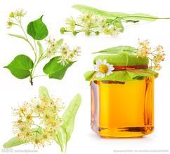 中国人均蜂蜜消费量发展趋势分析   近十年翻了一番