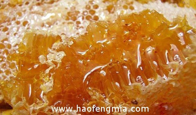 大学生村官一年卖土蜂蜜1.8万斤