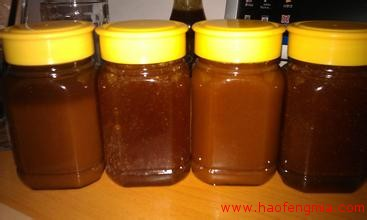 土蜂蜜+免费微店铺 养蜂人收入翻一番