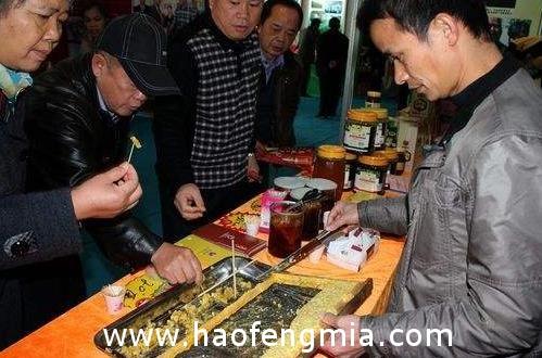 刘振平:推动三峡蜂蜜产业扶贫 带动近4000农户致富