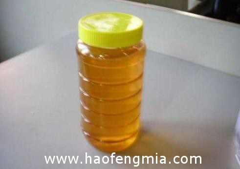 尼勒克县黑蜂产业与全国蜂产业对接