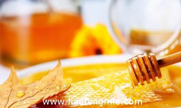 太阳谷蜂蜜介绍