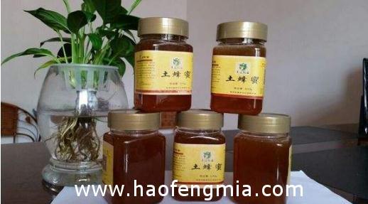 甘肃徽县蜂蜜登顶世界顶级品质认证