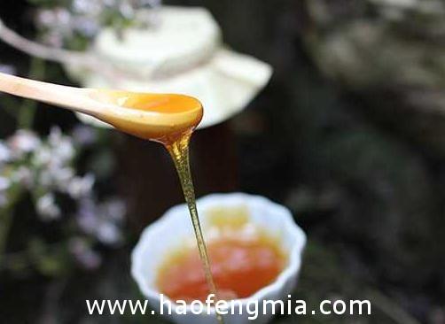 广元青川唐家河蜂蜜获农产品地理标志创建示范样板资格