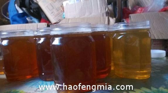 驻村工作队帮蜂农打开蜂蜜销路