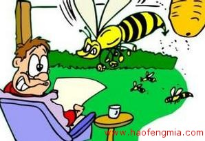 蜂毒治疗注意事项