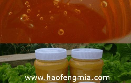 广州宝生园蜂产品厂被责令整改