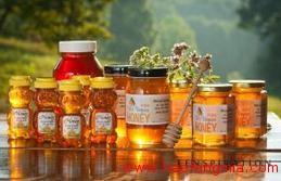 广西口岸首次进口欧洲蜂蜜