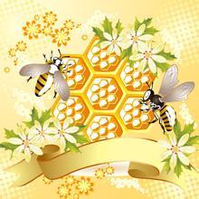 蜂产品制品