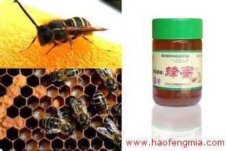 """尼勒克县黑蜂产业与全国蜂产业实现""""无缝对接"""""""