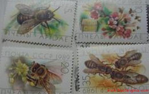 苏联养蜂科学研究所