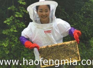 蜂蜜创业插上互联网+卖蜂蜜销售上千万