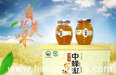 黑水中蜂蜜参展全国农业品牌推进大会