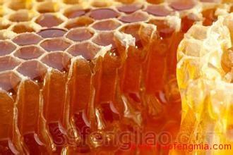 蜜蜂流蜜期怎么管理