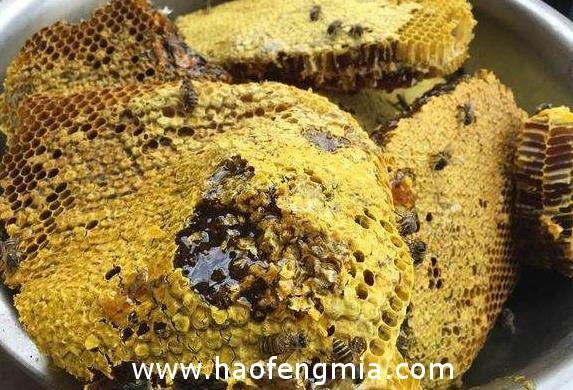 缅甸有机蜂蜜主要出口中国