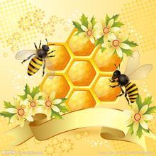 如何食用蜂蜜?蜂蜜简单食用方法