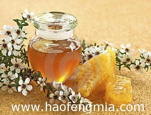 中新麦卢卡蜂蜜分析方法技术合作交流会在北京顺利举行