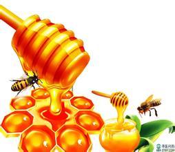 刺花蜜的作用与功效 白刺花蜜功效