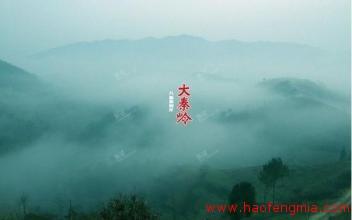 秦岭<a href=http://www.360fmw.com target=_blank class=infotextkey>蜂蜜</a>