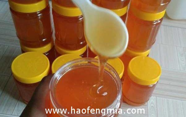一斤纯天然蜂蜜多少钱