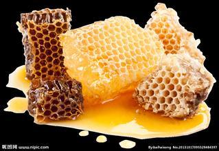 海南岛苗族从野生蜂巢中获取蜂蜜