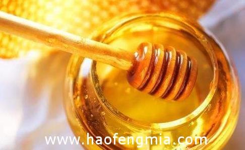 禅城区教育局集中采购蜂蜜    创新扶贫模式