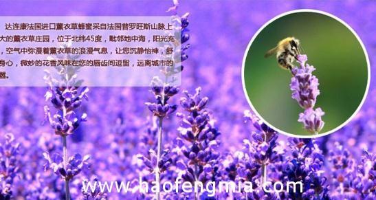 澳洲蜂蜜的作用与功效