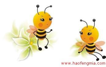 """蜜蜂交流靠""""打电话"""""""