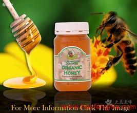 进口天然蜂蜜