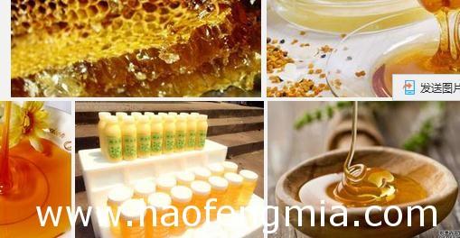 中国蜂产品辽宁蜂蜜首次出口埃及