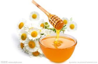 蜂蜜掺入雷公藤碱的鉴别方法