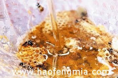 蜂蜜的保质期到底是多久?