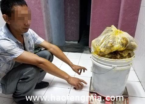 黔江警方破获一起蜂蜜盗窃案